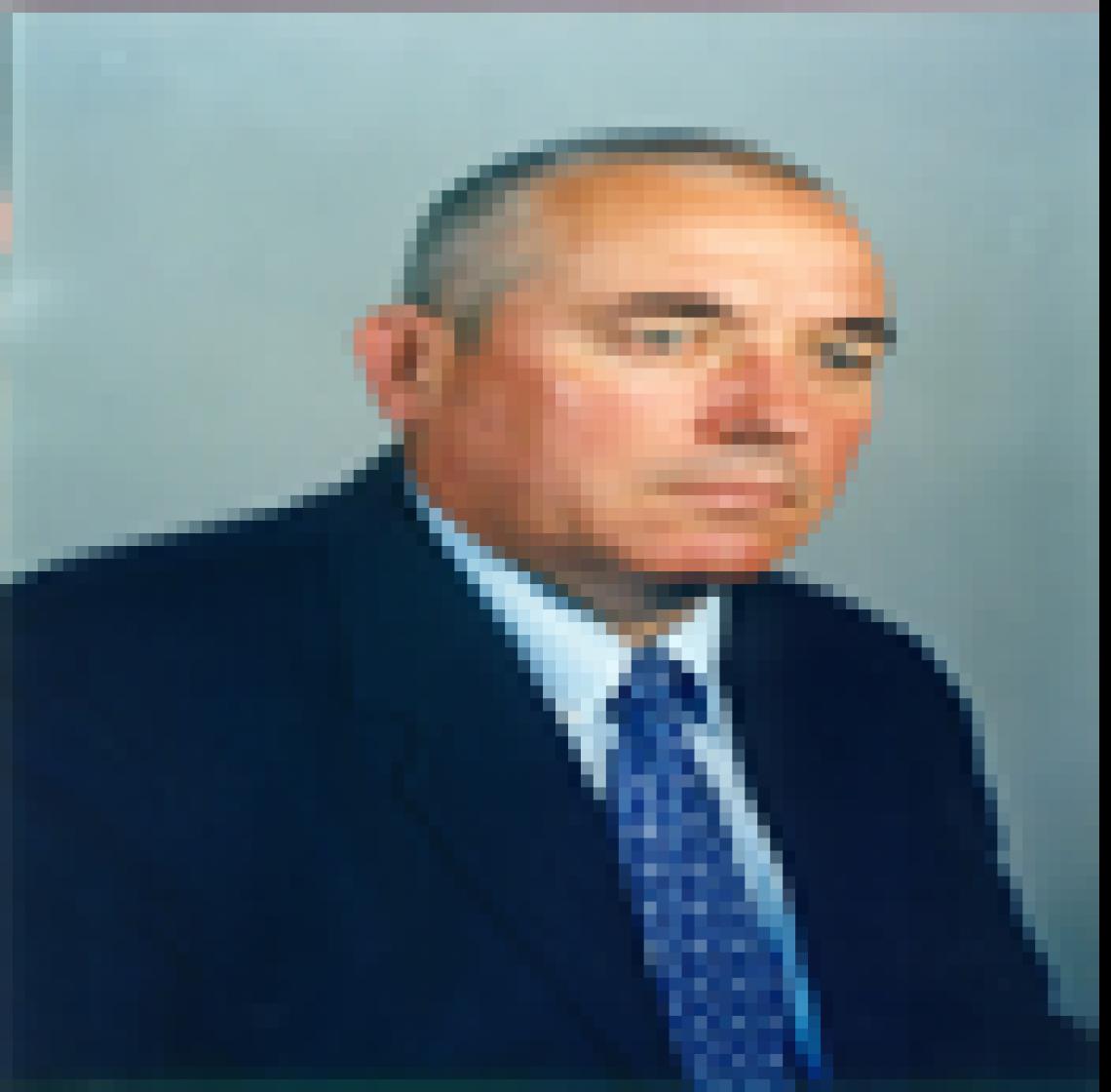 Prof. univ. dr. ing. Gheorghe GUTT